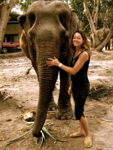 Volunteering with Wildlife Friends of Thailand