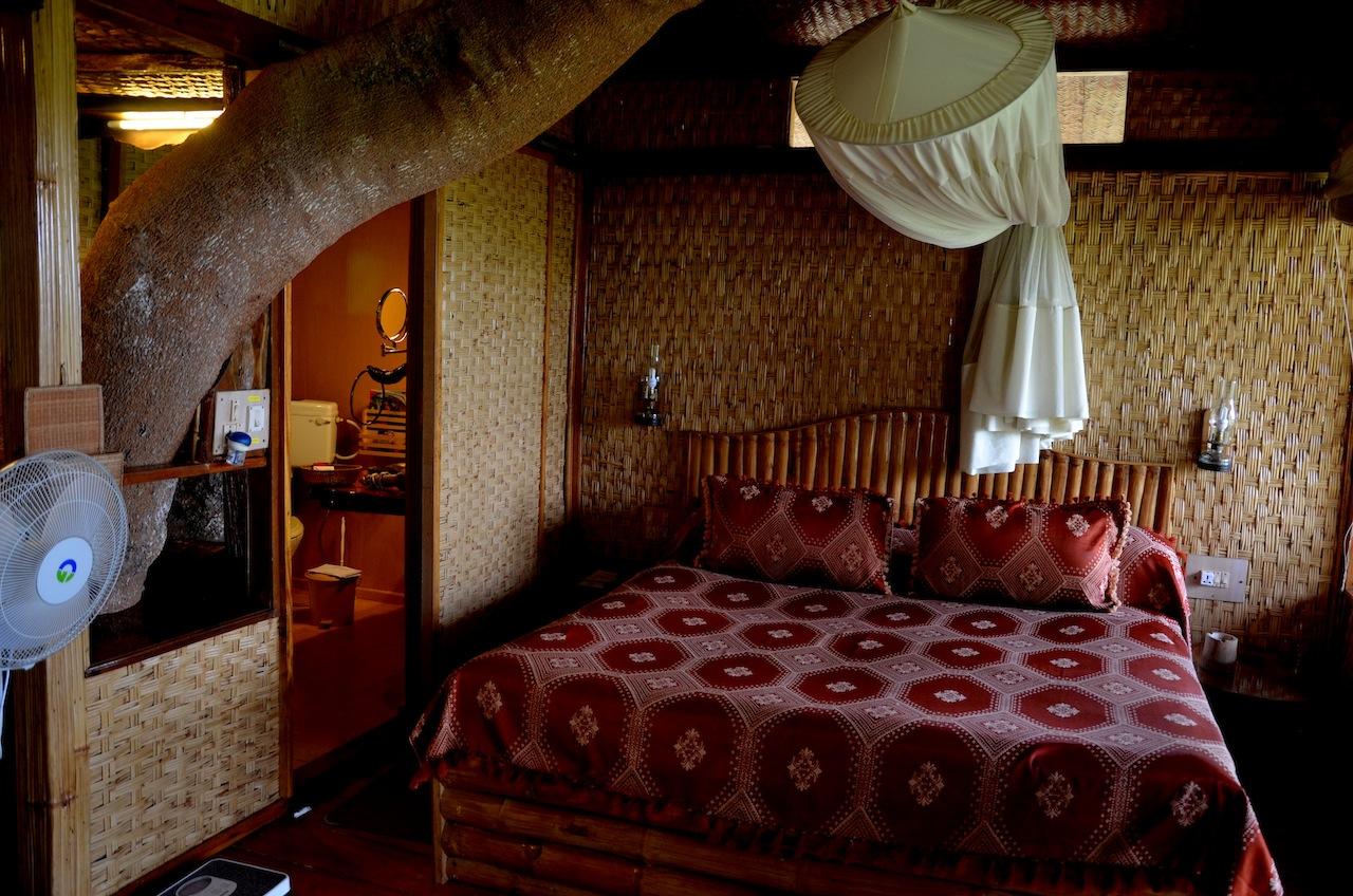 tree house, wayanad, india