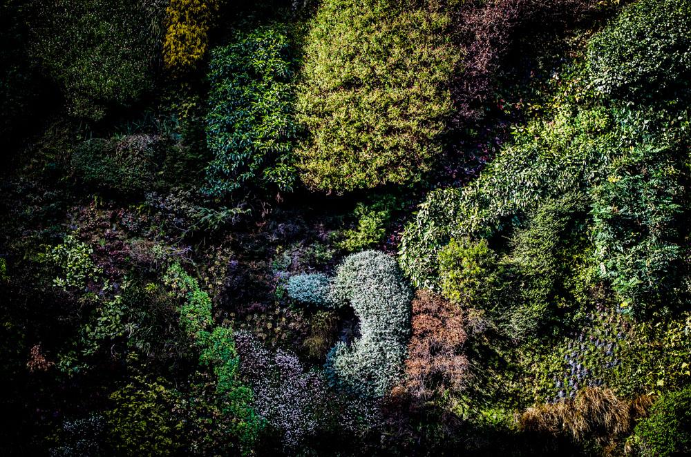 grüne Wand Madrid