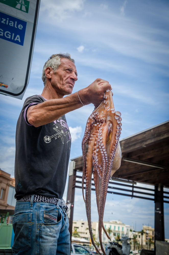 Bari, Oktopus