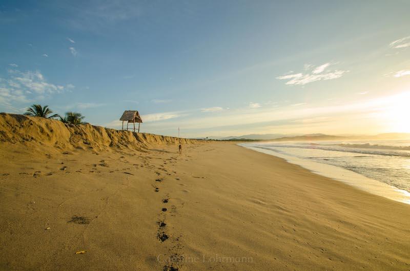 Strand Chacahua