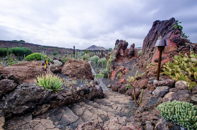 Jardín de Kaktus Lanzarote