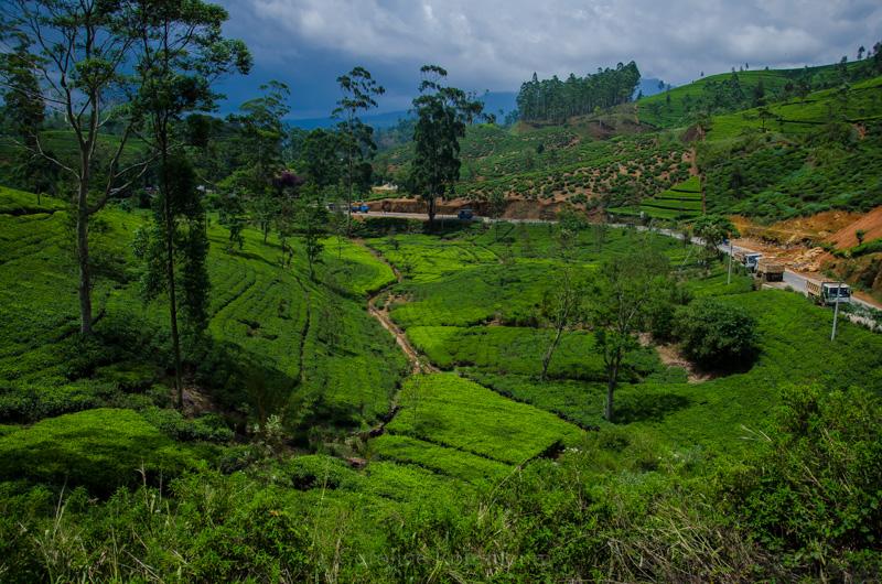 Zug von Ella nach Kandy