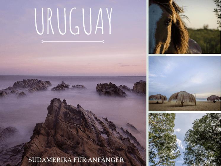 Südamerika für Anfänger